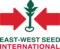 east_west_seed_international